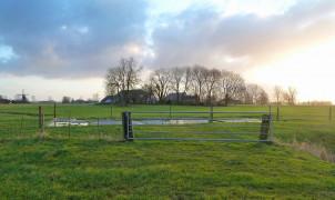 Home - Commissiemer nl