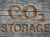 shutterstock_1802347960